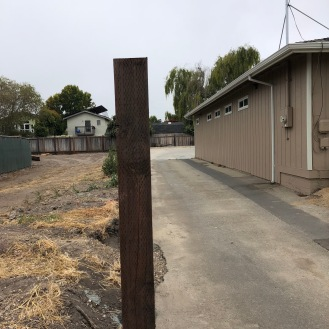 Perfectly straight post line for the new fence. You see just one, but there are ....